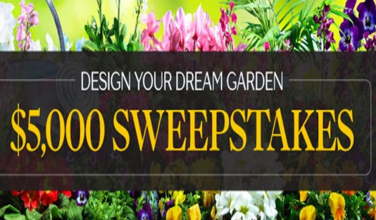 The $5000 Sweepstakes